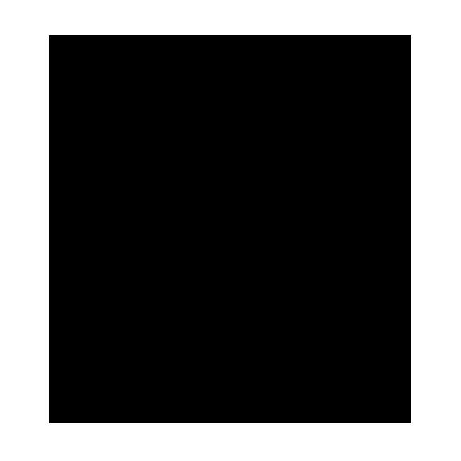 atlantic south wolf logo